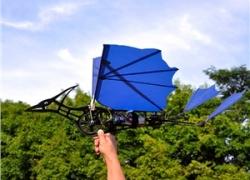 LEFLY 3CH Flatter Schwinge UAV RTF 2.4GHz de RCMaster