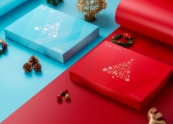 VIVO X20 Christmas Edition: Best Christmas Gift 2017